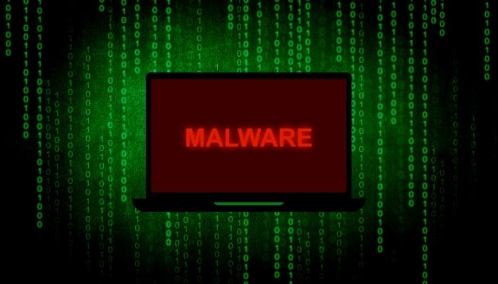 Acerca del malware