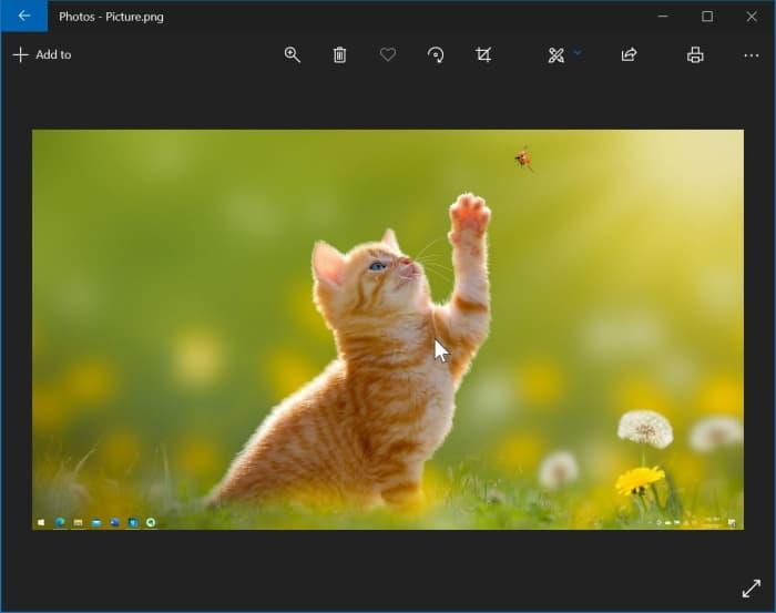 reinstalar la aplicación de fotos en Windows 10 pic1